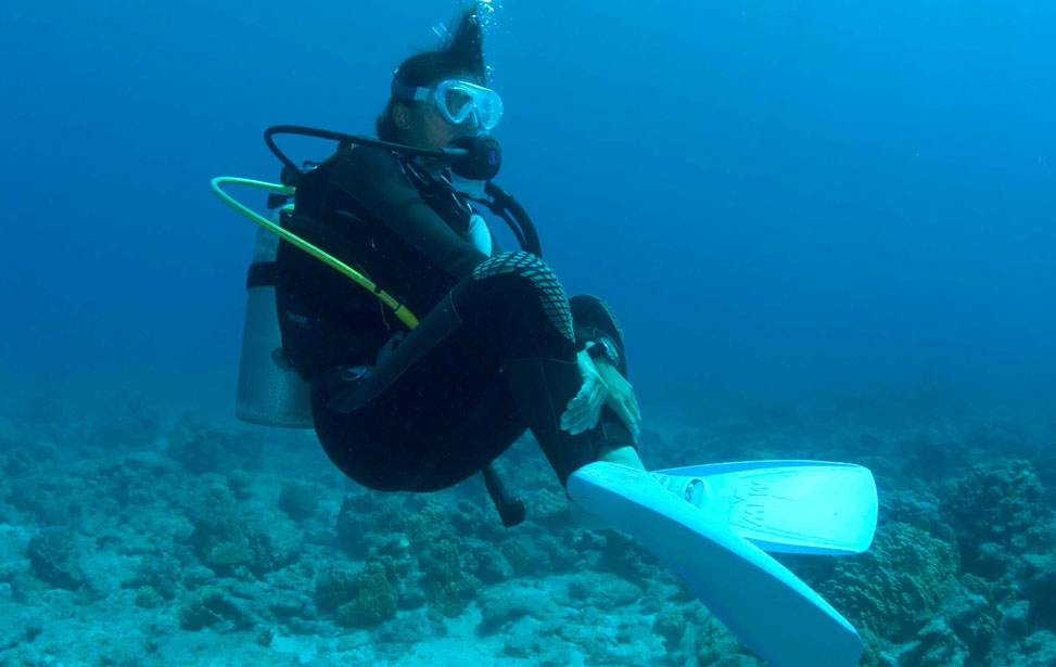 hovering-diver.jpg
